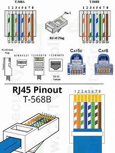 Female Cat 5 Cable Wiring Diagram