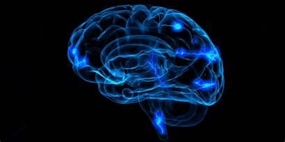 Electric Brain Shock Shocks Creative Block Human