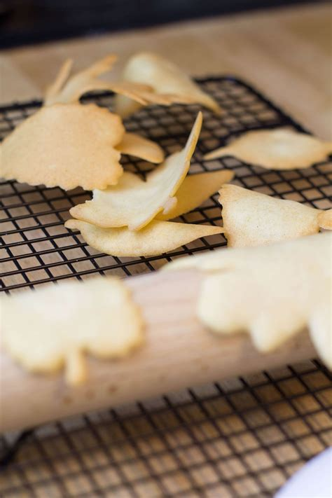 Biscuit Tuile by Tuile Biscuits