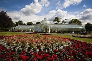 Glasgow botanic gardens gardens pictures for Glasgow botanic gardens