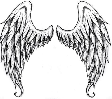 17 best images about wing simple wings drawing free best simple