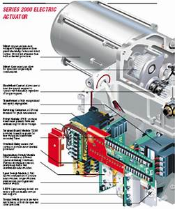 Mechanical Vs Instrument