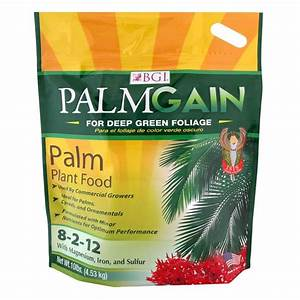 BGI 10 lb Palm Fertilizer-FPALM10 - The Home Depot