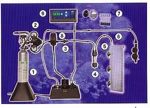 Dennerle Ph Controller : dennerle 3093 prof line ph controller evolution de lux aquarium line aquarium store ~ Orissabook.com Haus und Dekorationen