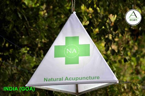 gallery ecan international school acupuncture learn acupuncture