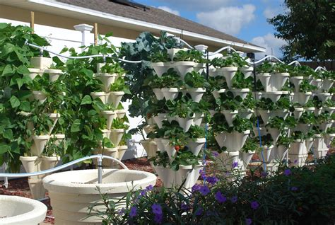 hydroponic gardens at home home outdoor decoration