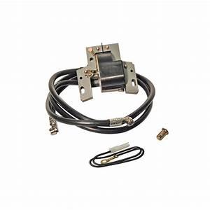 Briggs Et Stratton Tondeuse Pieces Detachees : bobine allumage adaptable briggs et stratton 394891 ~ Dailycaller-alerts.com Idées de Décoration