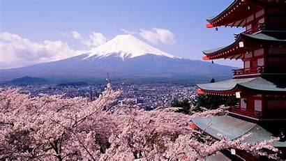 Japan Pagoda Cherry Chureito Blossoms Wallpapers Mount