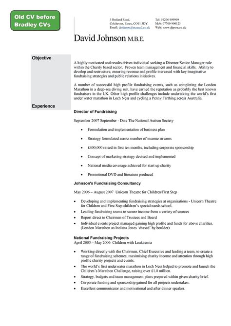 giraffe cvs graduate professional executive cv writing