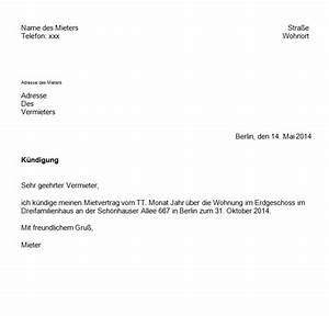 Kündigung Mietvertrag Wegen Eigenbedarf : k ndigung eines mietvertrages mit vorlage ganz einfach giga ~ Lizthompson.info Haus und Dekorationen