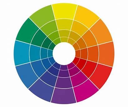 Theory Wheel Ryb Colors Restaurant Figure Primer