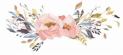 Watercolor Transparent Flower Background Leave