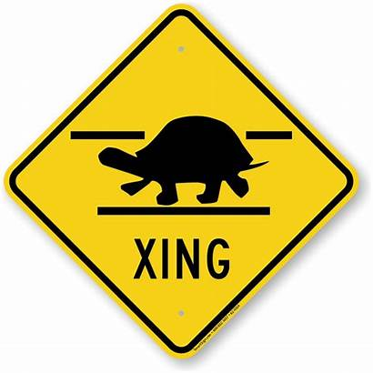 Sign Road Turtle Xing Crossing Animal Signs