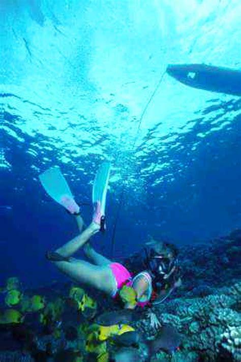 big island watersports snuba shore dive hawaii discount