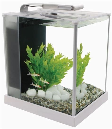 Fluval Spec Aquarium 10l  19l Gloss Black White Led Light