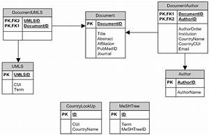 Relational Database Schema  Note  Umls  U2013 Unified Medical