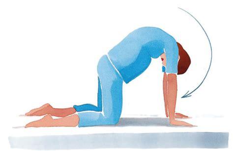 ginnastica per interno braccia ginnastica in gli esercizi da fare la mattina
