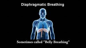 Diaphragmatic Breathing Part 1 Of 3
