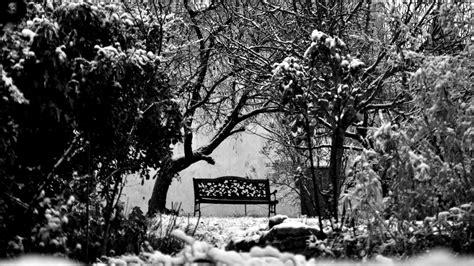 black  white bench  winter widescreen wallpaper