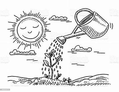 Watering Drawing Plant Growth Clipart Sun Clip