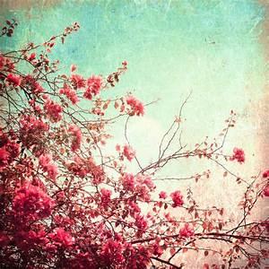 Vintage Flowers Tumblr