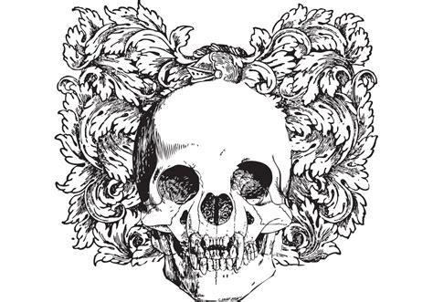 floral skull vector illustration   vector art stock graphics images