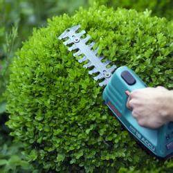 Buchsbaum Kugel Schneiden : buchsbaum triebsterben cylindrocladium vorbeugen und ~ Lizthompson.info Haus und Dekorationen