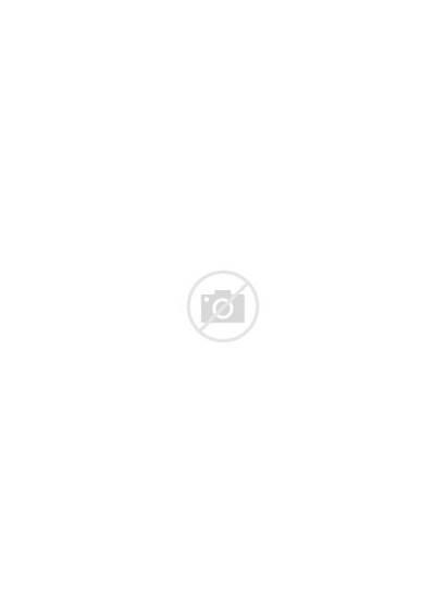 Shere Khan Jungle Disney Silhouette Deviantart Clipart