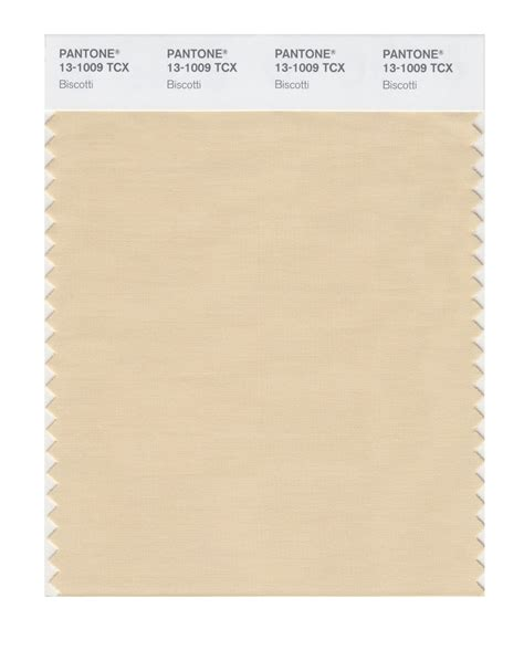 biscotti color biscotti color almond biscotti from valspar home colors
