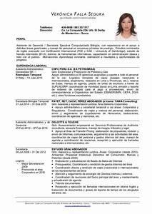 Cv Veronica Falla