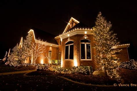 best outdoor decorations for 2014 starsricha - Outdoor Christmas Lights For Bushes
