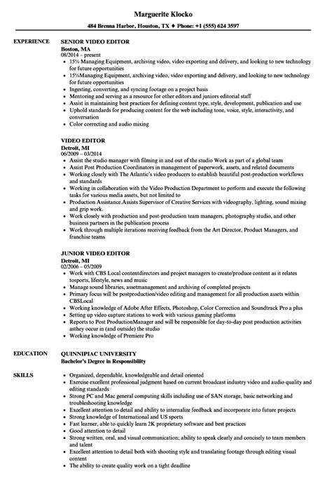 Resume Editor by Editor Resume Sles Velvet