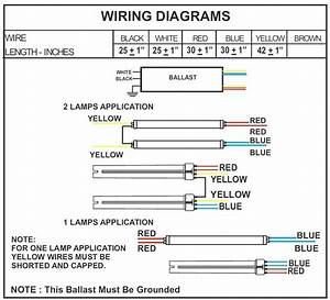 F96t12 Ballast Wiring Diagram Download