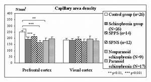 Reduced Capillary Density in the Prefrontal Cortex in ... Paranoid Schizophrenia