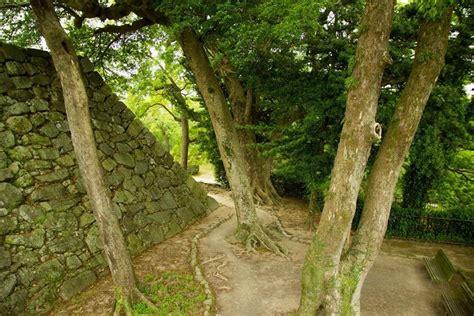 Taman Ohori di Fukuoka dan Kastil Fukuoka, Sebuah Warisan Sejarah