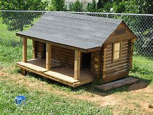 meet the winners of the best doggone doghouse contest With lg dog house