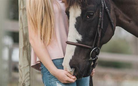 cost    dream horse success