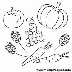 Gemüse Bilder Zum Ausdrucken : kostenlose malvorlagen zum ausdrucken zum thema ernte ~ A.2002-acura-tl-radio.info Haus und Dekorationen