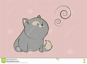Gros chat gris photos stock - Inscription Gratuite