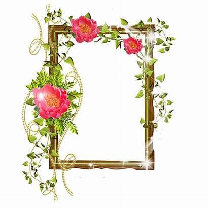 Transparent Frames Frame Flowers Shining Flower Digital