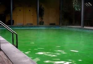 Nettoyer Piscine Verte : eau verte dans votre piscine comment la nettoyer ~ Zukunftsfamilie.com Idées de Décoration