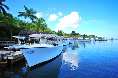 dive boat anthony s key scuba diving resort in roatan bluewater