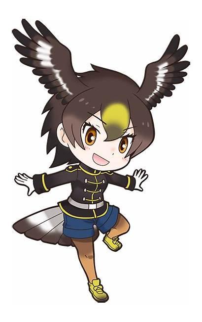 Golden Eagle Wiki Kemono Friends Library Nexon