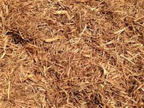 cedar vs hardwood mulch bulk landscaping mulch available to buy from kevin s