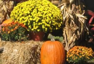 Pumpkin Halloween Yard Stakes by Autumn Yard Decorations Autumn Weddings Pics