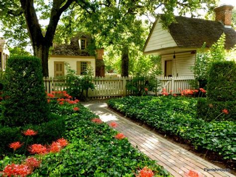 spider lilies in a colonial williamsburg garden in the