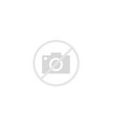 Closing Lines For Cover Letters Template Closing Sentence Cover Letter Examples Closing Cover Letter 526x744 Cover Letter Closing Sentence Example Cover Letter Closing Blog How To End Cover Letters Basic Resume Cover Letter Templates How