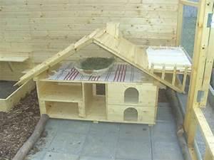 Kaninchengehege Bauen Innen : kaninchengehege innen google suche rabbits pinterest bunny rabbit and cavy ~ Frokenaadalensverden.com Haus und Dekorationen