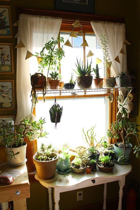 best 25 garden bedroom ideas on plants indoor