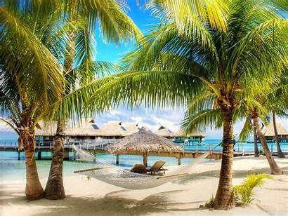Screensavers Tropical Beach Standard